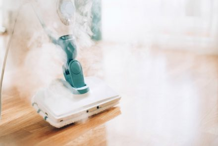 which is the best steam mop to buy